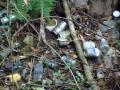 皆瀬別れの投棄ゴミ