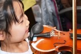バイオリン (17)