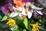 献花 (2)