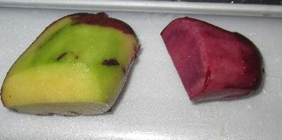 ジャガイモ緑化とソラニン (7)