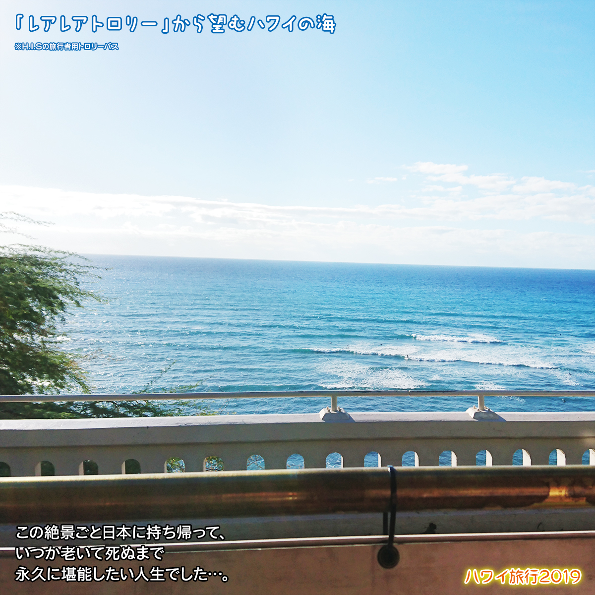 DSC_9198.jpg