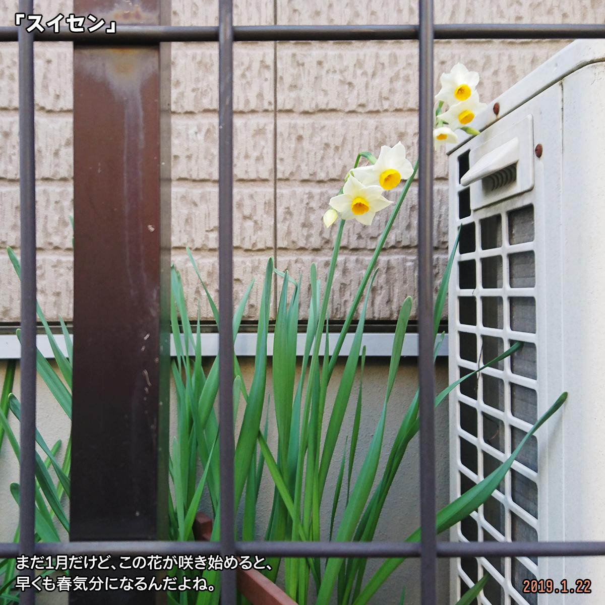 DSC_9401.jpg