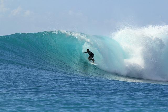 surfing-2686393_640.jpg