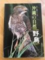 書影 沖縄の自然 野鳥
