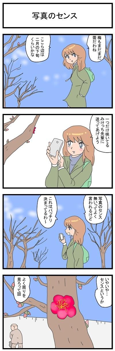 写真のセンス