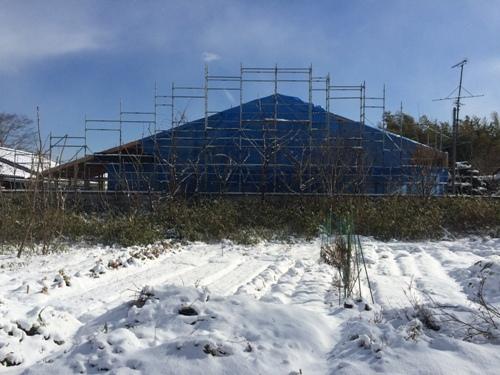 秋保の家 建方開始3