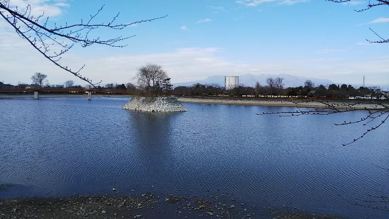 波志江沼環境ふれあい公園201902