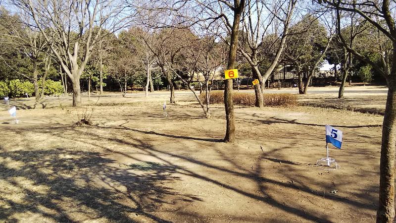 カビタリの森201902