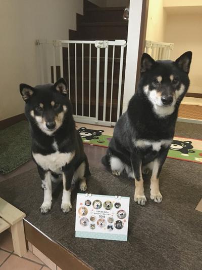 ももこちゃん(左)、よろくくん(右)(京都府)