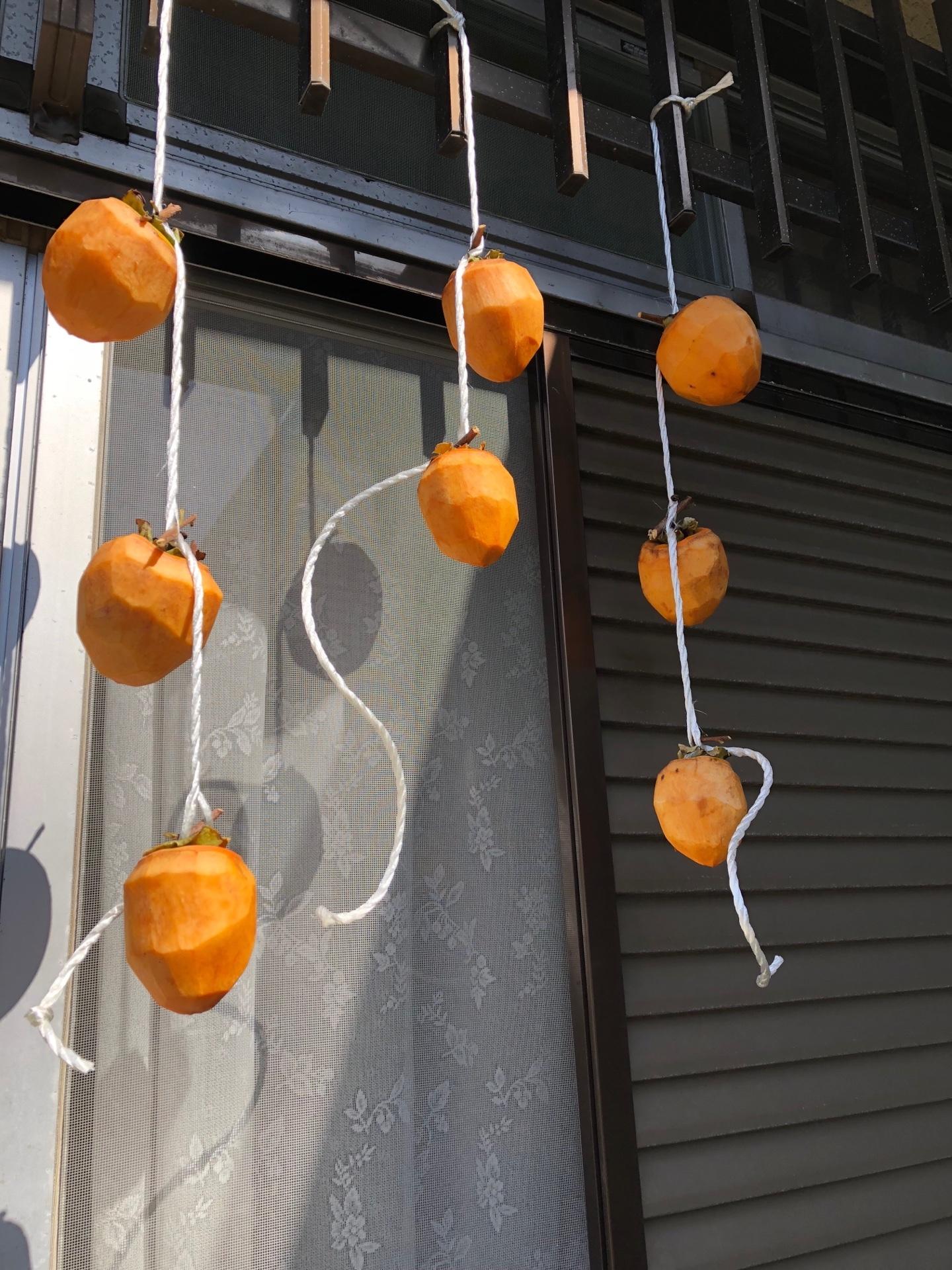 干し柿吊るすD3F291B4-51EE-4A69-BE77-315DE6298F60