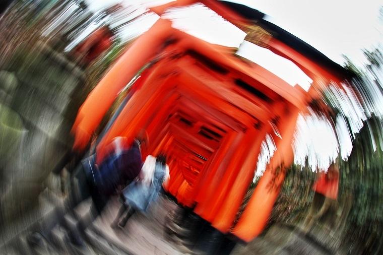 201191231伏見稲荷4Ha
