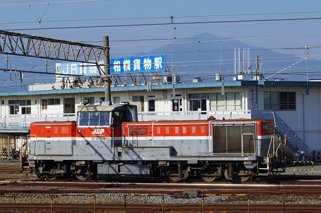 IMGP5601.jpg