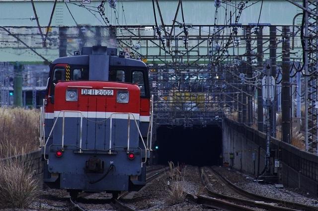 IMGP6330.jpg