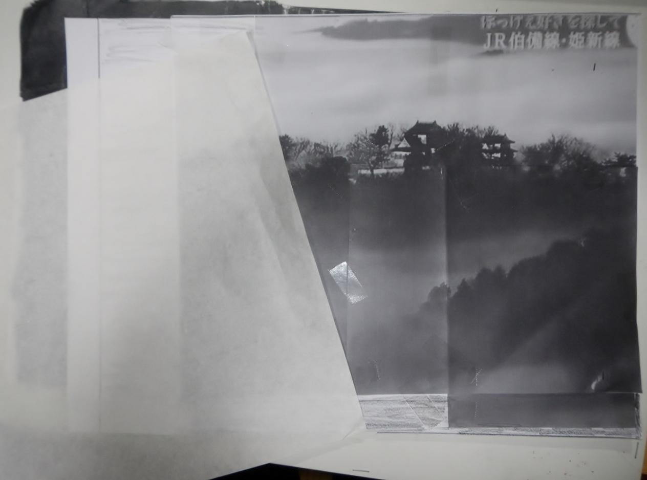 DSCN6375 (1280x960)