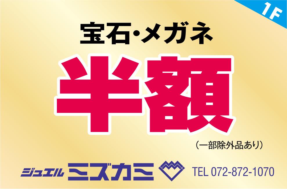 mizukami2018.jpg