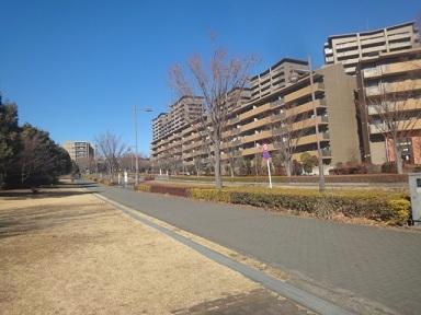 aruki482.jpg