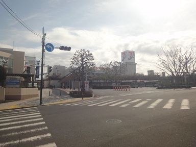 aruki505.jpg