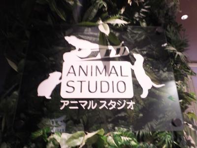 オービィ横浜_(16)_convert_20190108212259