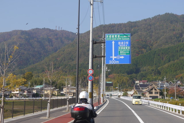 P1380545.jpg