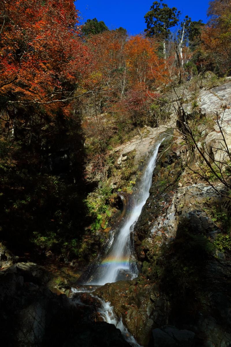 hitujigataki_18-11-05_0004.jpg