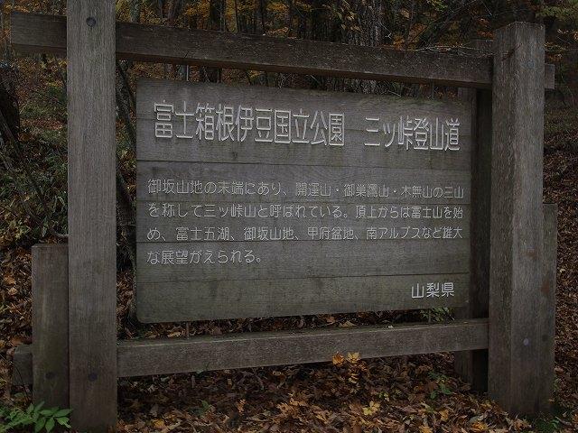 181103-114.jpg