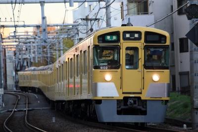 5D3D4592.jpg