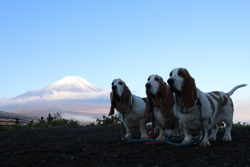 富士山0005