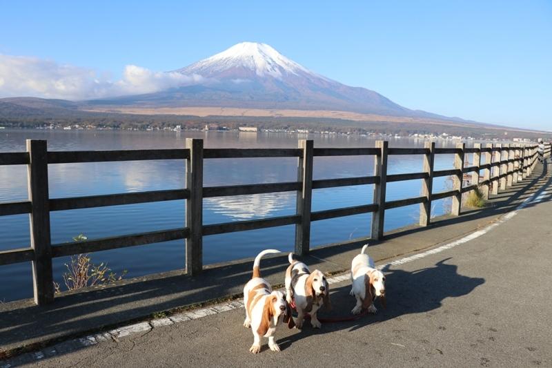 富士山0006