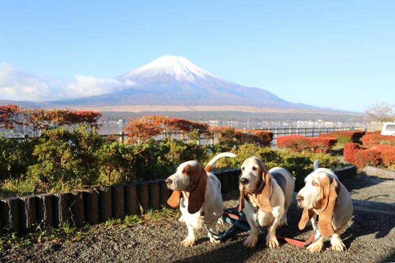 富士山0007