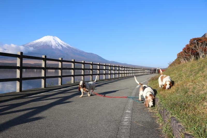 富士山0008