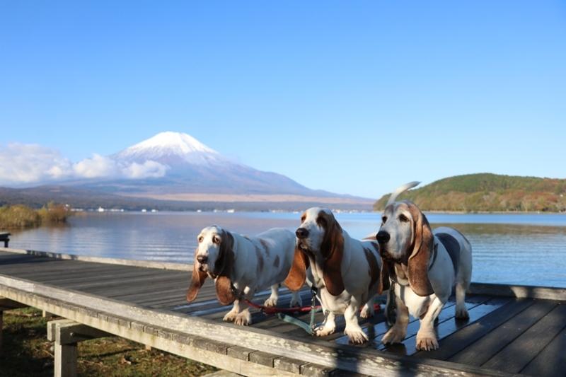 富士山0011