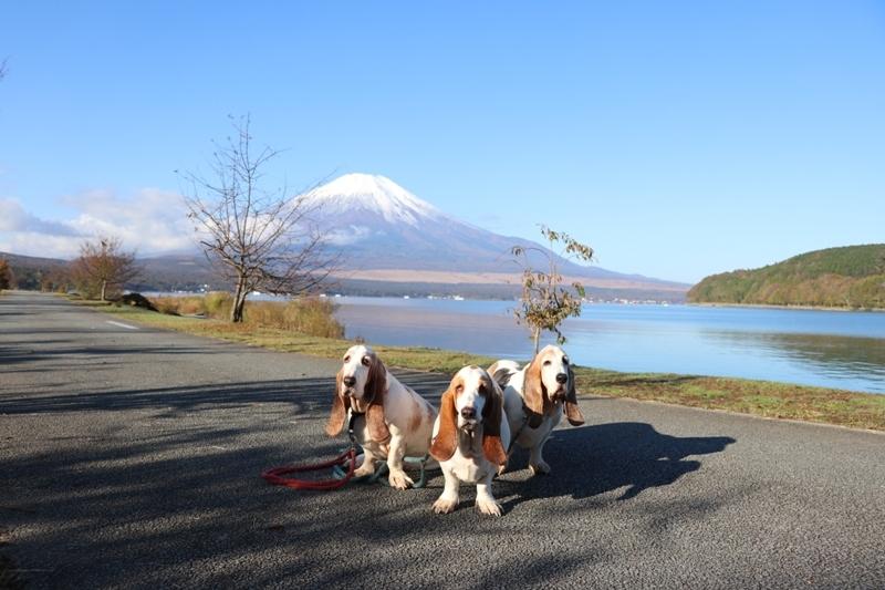 富士山0012