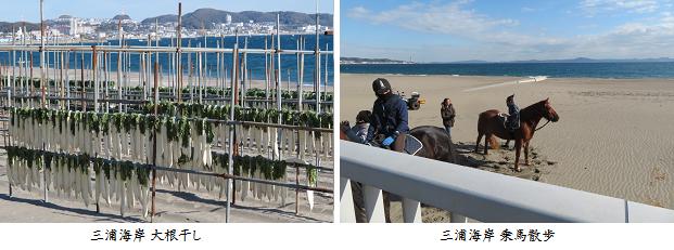 b1213-2n 三浦海岸