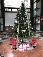マンションロビーにクリスマスツリー181224