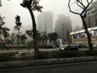 冬の林口は霧が濃い181225