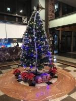 クリスマスツリー点灯181225