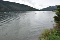 湖181231