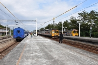 知本で新旧列車そろい踏み190126