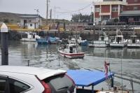 漁港らしい光景181125
