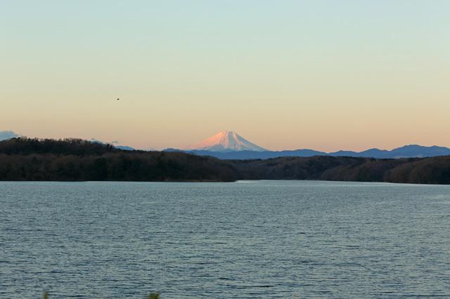 2019元旦の富士山@狭山湖