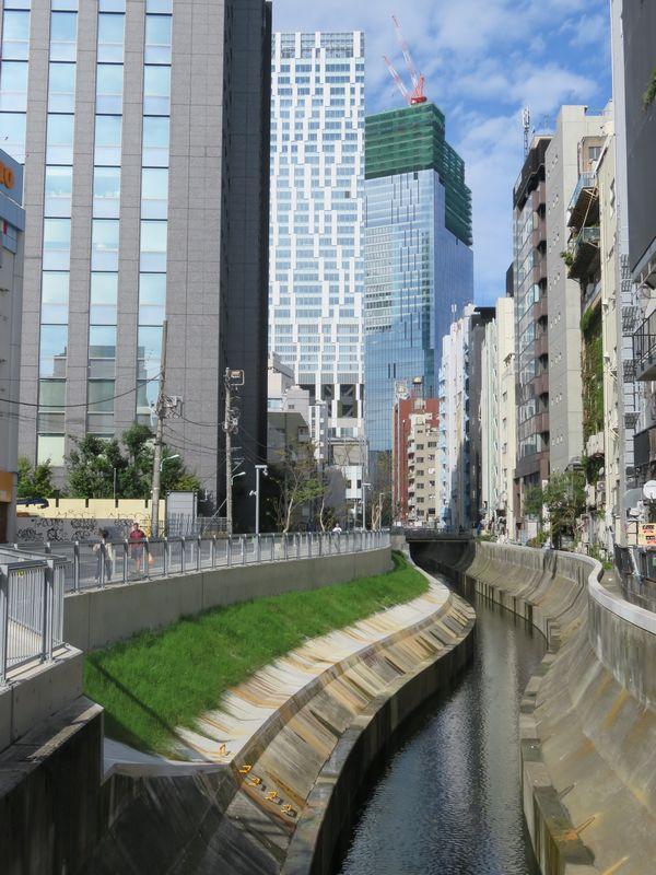 渋谷駅付近の東横線廃線跡に完成した遊歩道