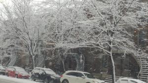 snow2018-00