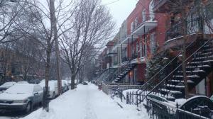 winterscene-2019-01