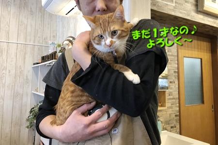 箱根路③14