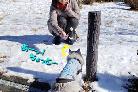 箱根路③27