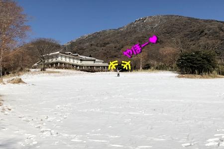 箱根路④9