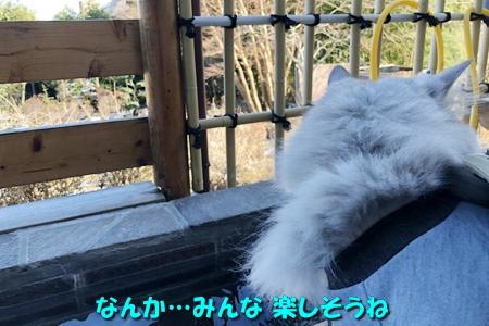 箱根路⑤6