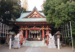 181126川口前川神社の欅⑨