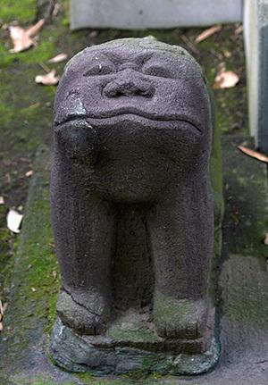 181126川口前川神社の欅⑩