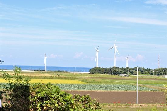 ⑪風力発電風車と日本海 - コピー